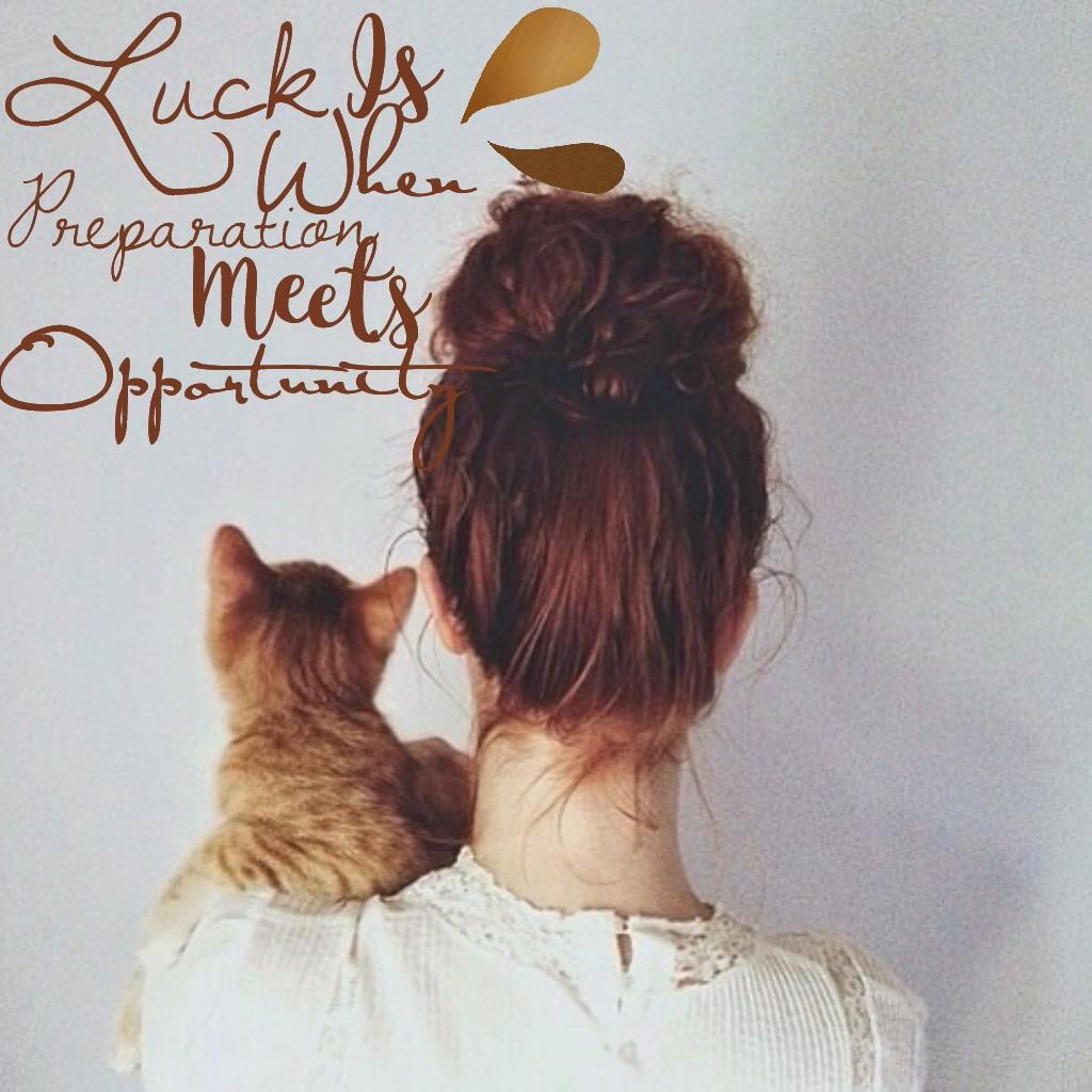 Фото на аву девушка и кошка