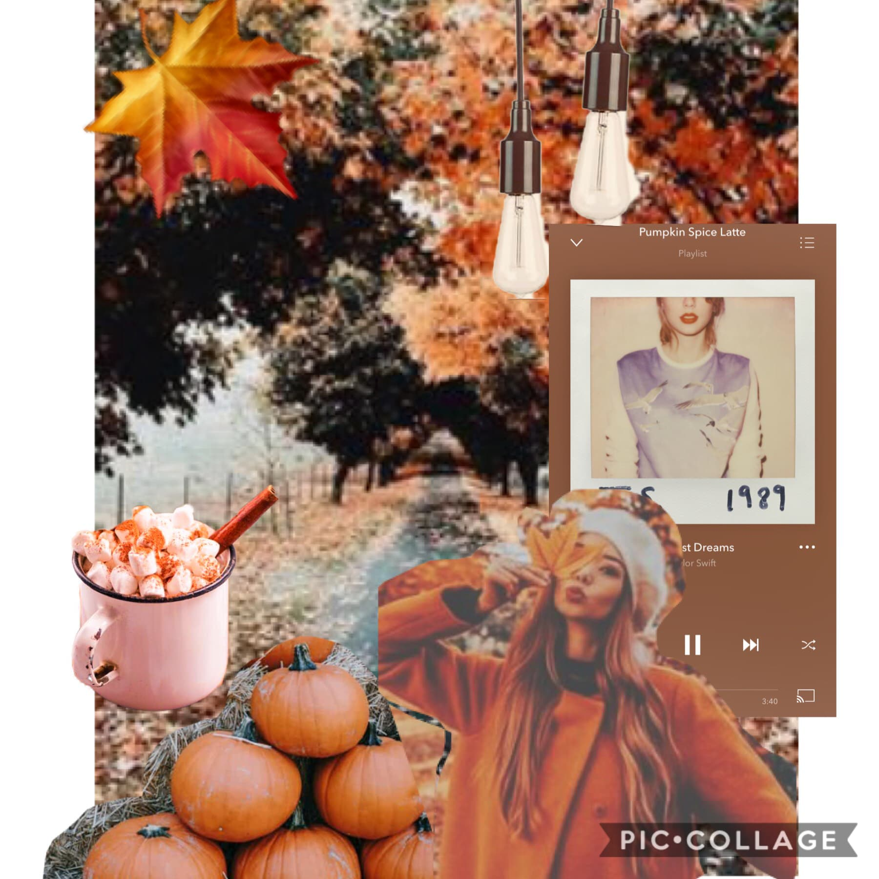 I post so many fall collages
