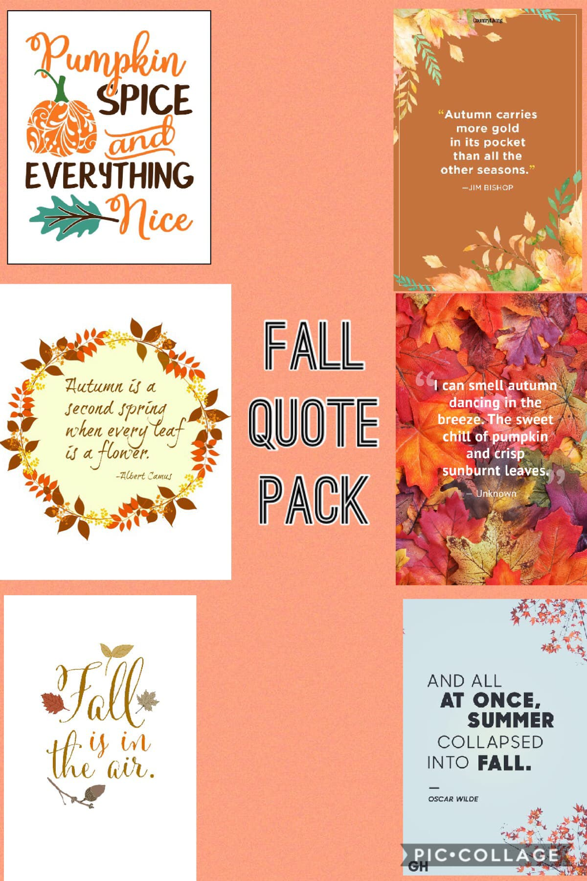 Fall Quote Pack #2 !! Hope y'all like it! Just tap on the collage to collect the quotes or take a screenshot 🎉🎈 THANK YOU SOOO MUCH FOR 200 FOLLOWERS!! 🥳🥳
