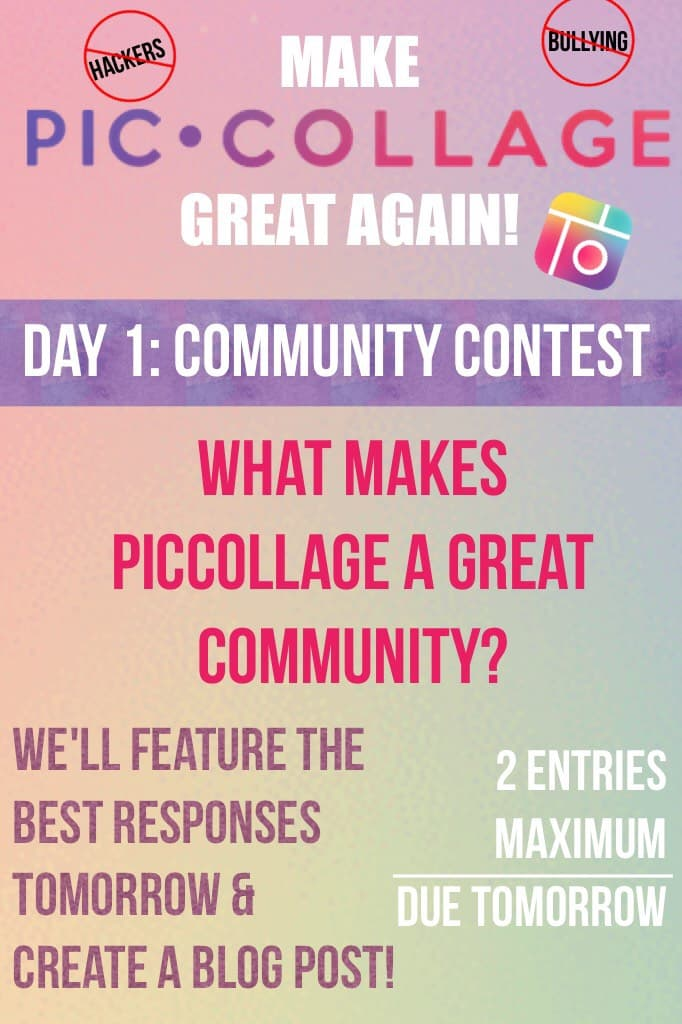 What makes PicCollage a great community?