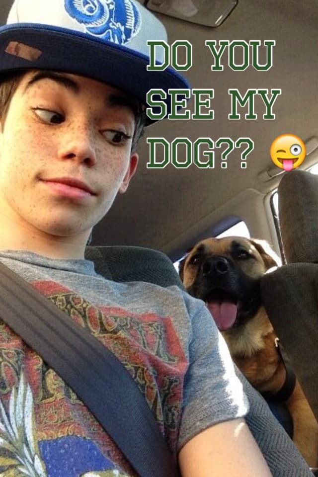 Do you see my dog?? 😜