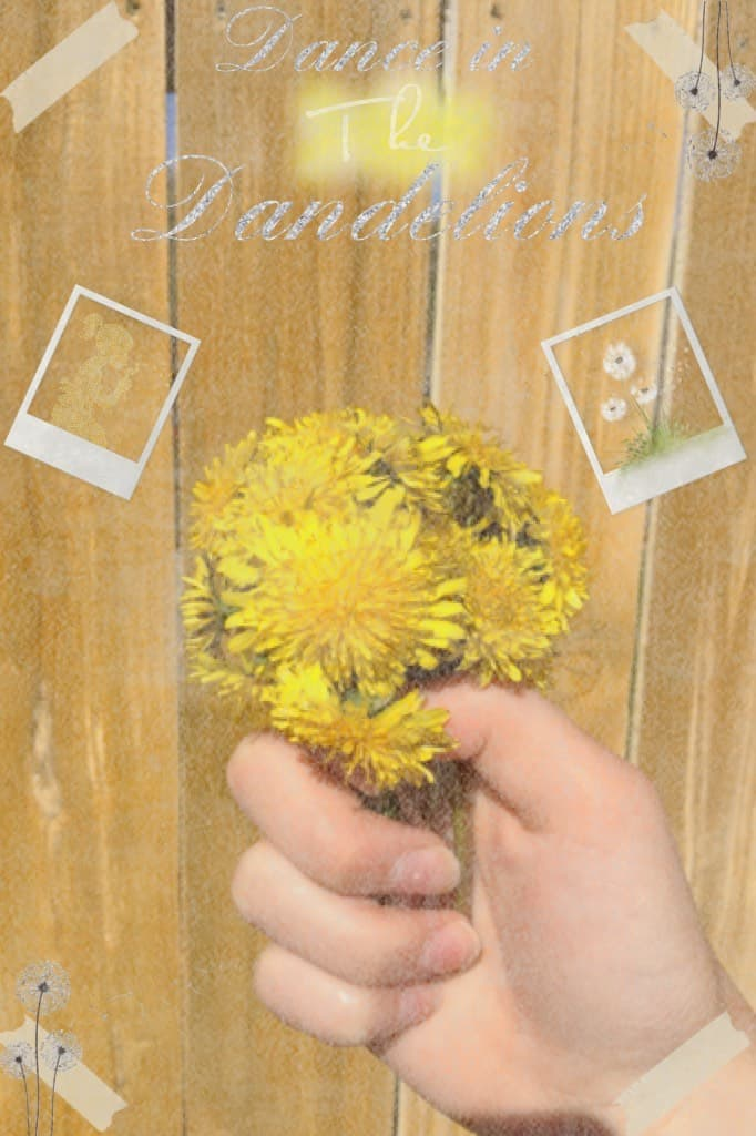 I took this picture of some dandelions I picked! Does it look good?🌼