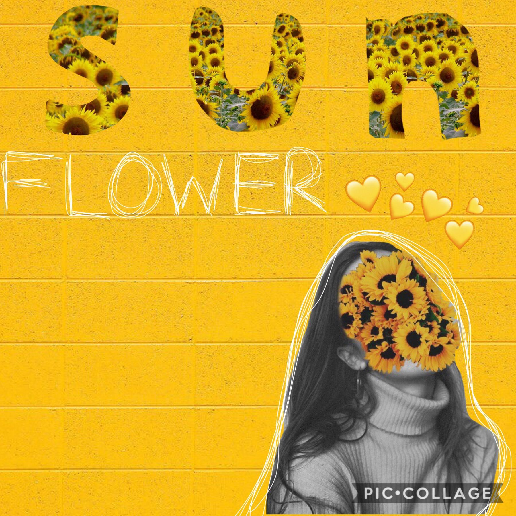 Sunflower vibezzz