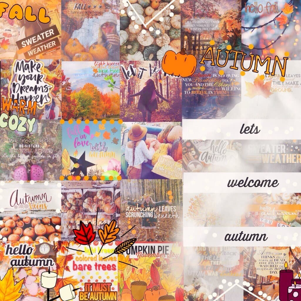 ✨ tap ✨  WOWWWZZZAAA ITS MONDAYYY  this is an amazing mega collage created by the wonderful @scatteredpetals  Go give her a follow if you haven't already!!💞