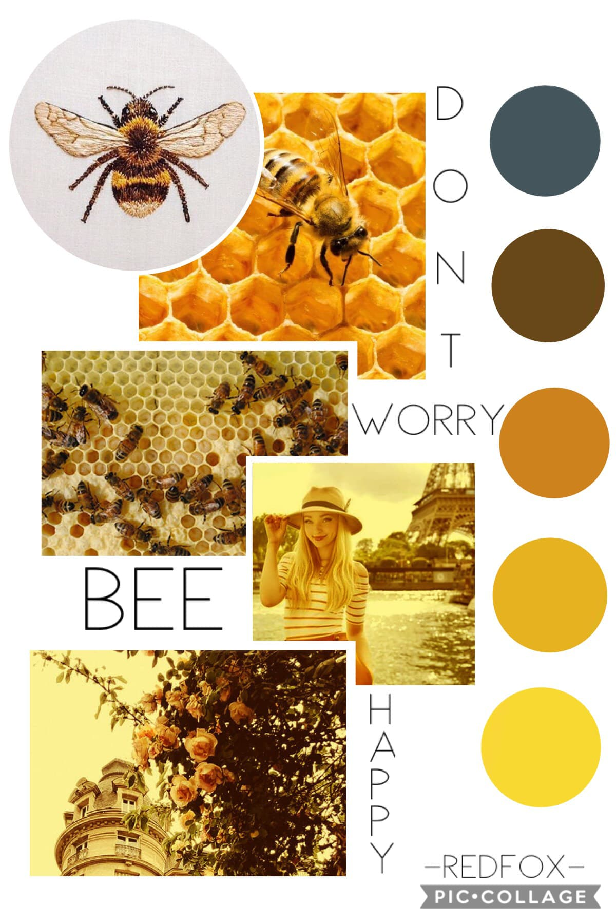 🐝t a p p i t y  t a p🐝  This is one of my fave collages I've ever done!!!!! Please let me know what you think!! I'm so happy with the way this turned out!!!!! 💛🖤💛🖤💛