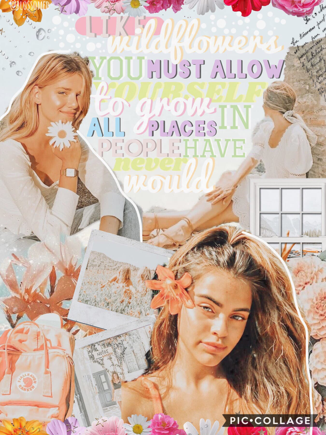 🌷 grow like wildflowers tap! 🌷 hiya guys! how are you? 🥰 I'm so so sorry for not posting like I normally do😣 I've had school, but I'll definitely post more💗 thank you for all your comments, what do you think of this? comment below👇how many comments can we