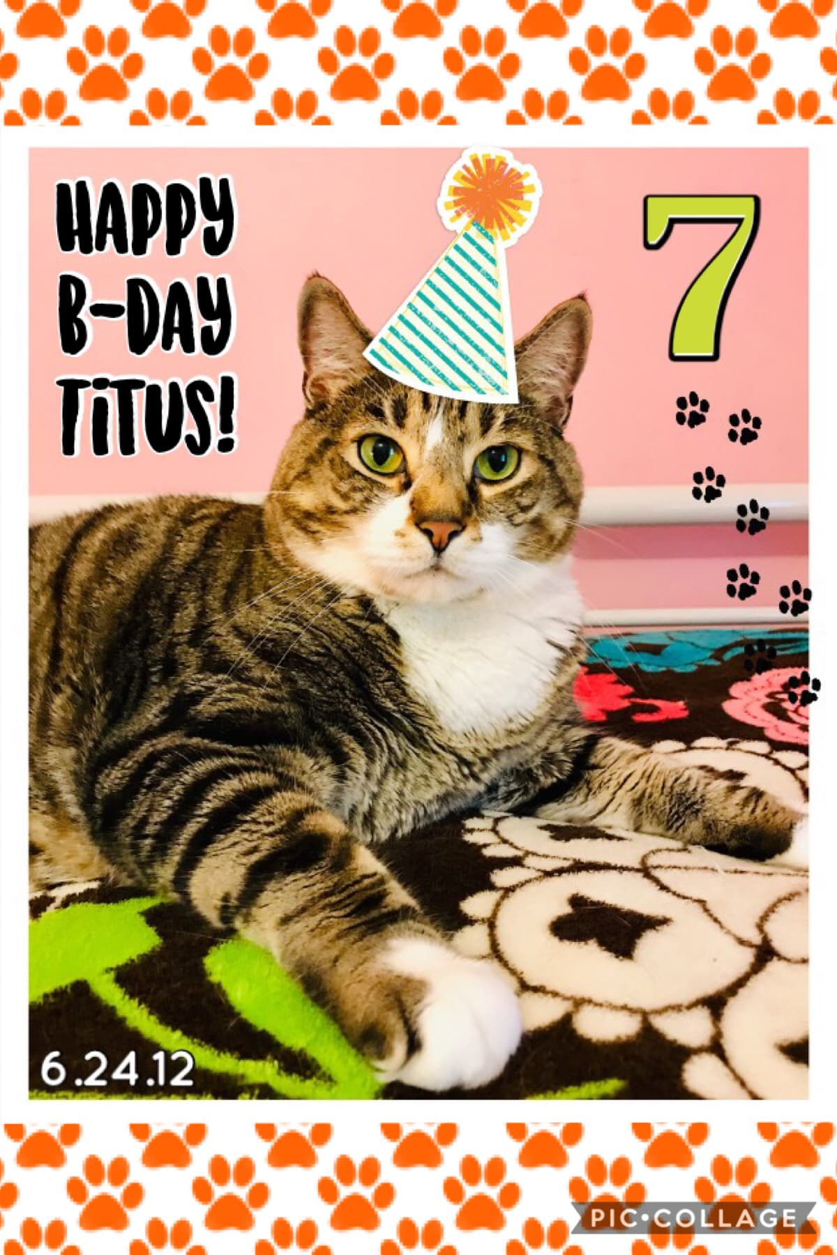 My cat's 7th birthday was on Monday! 🥳 🐾 7️⃣ 🐈 💚 🧶 🎂 (I made this then but had issues posting it. 😤 ) We've had him since he was born and he's the sweetest, also very overweight if you can't tell. 😂 📅 I couldn't ask for a better cat, I love him so much. 🥰