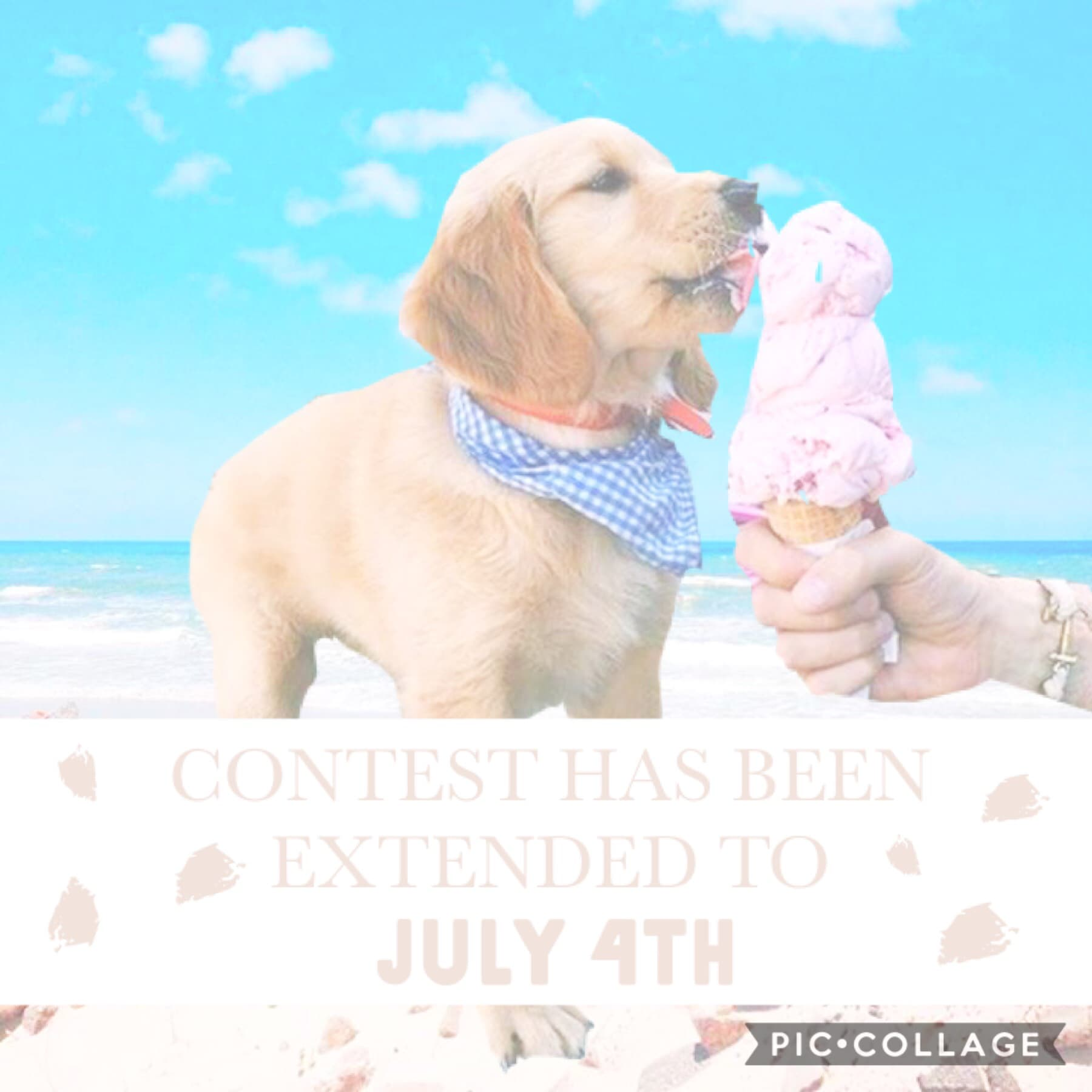 🐋I just love  this puppy! Sorry for changing date I just want people to have something else to celebrate on the 4th! QOTD: what are u doing on the 4th? AOTD: I have a festival I am going to with my friend! Can't wait!🐋
