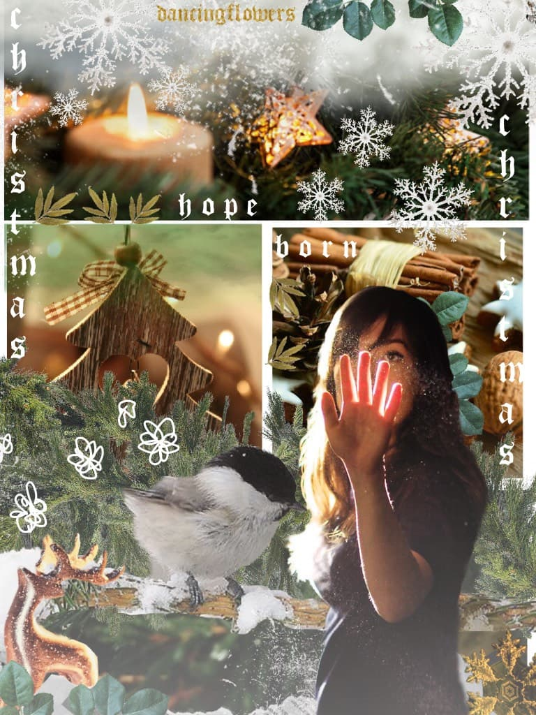 🎄 MERRY CHRISTMAS! 🎄  had to make a quick Christmas collage on the day, inspired by photo-booth (but obviously not as good) ! Tell me what you did/are doing today in the comments and what you got! xx 💕🎄💫