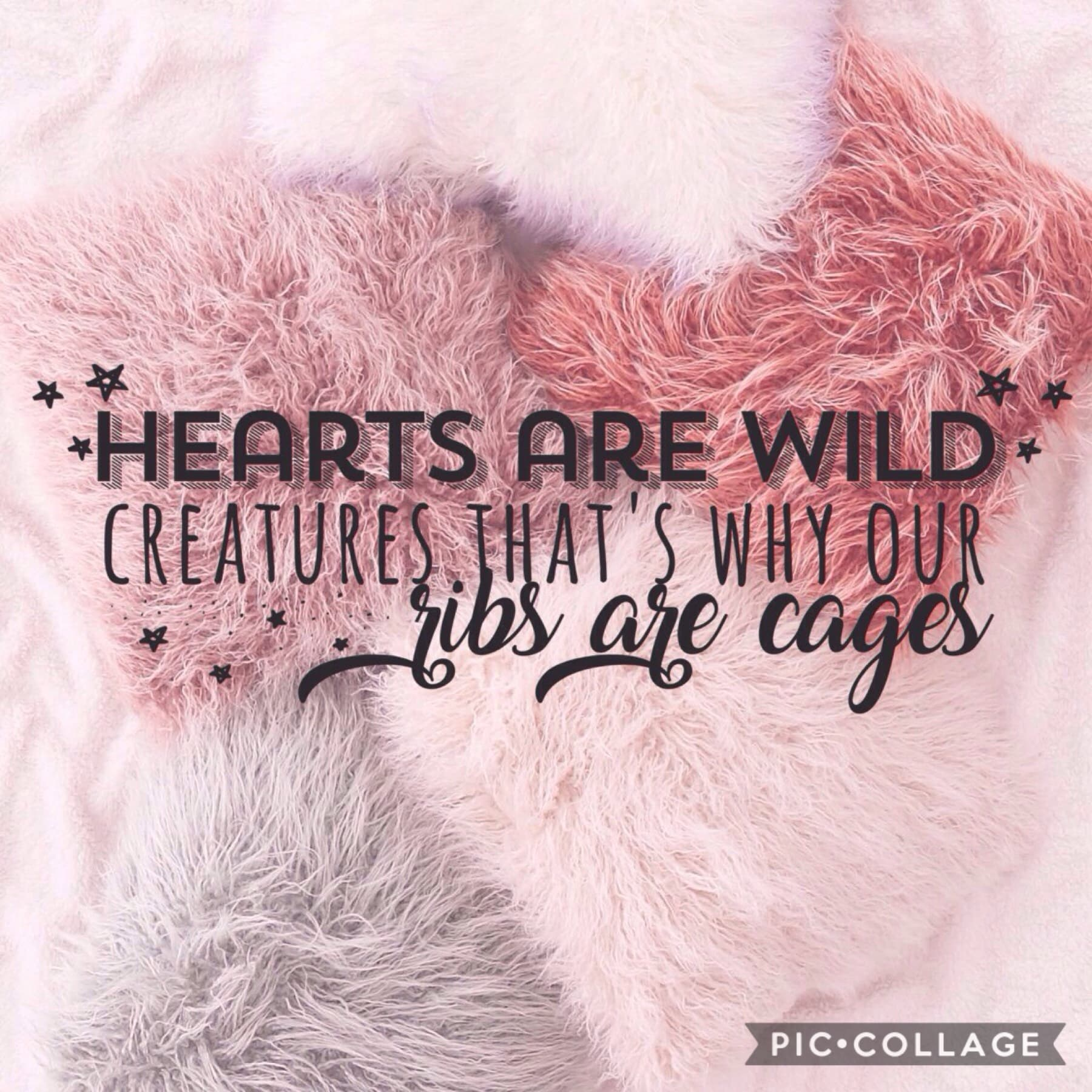 """> tap < i chose this quote because i have been on a bit of an emotional roller coaster lately as i have had some really high highs but some really low lows. throughout this i have been lead by my """"wild"""" heart xxx"""