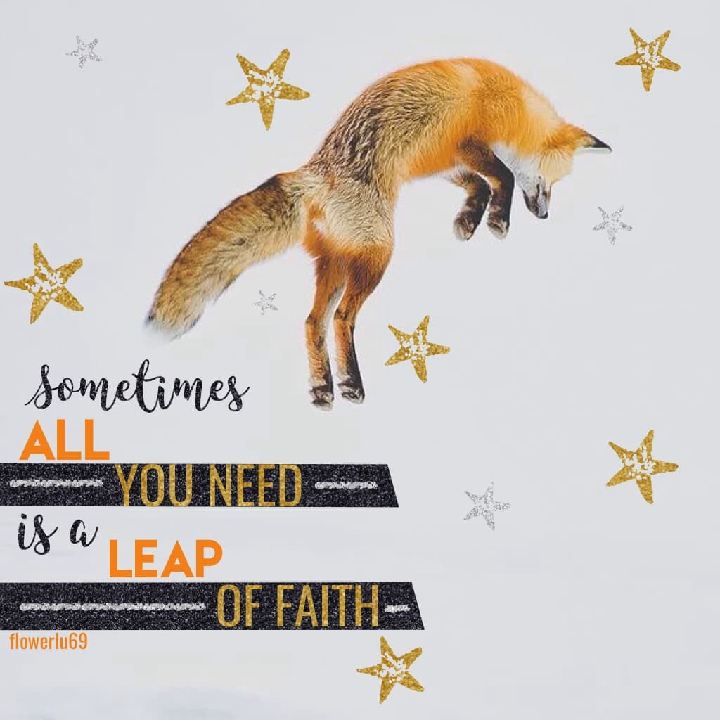 Creds to @caribous for the picture. I like fox. If anyone wants, I will put a book and music recommendations in the remixes. :) smiley face.