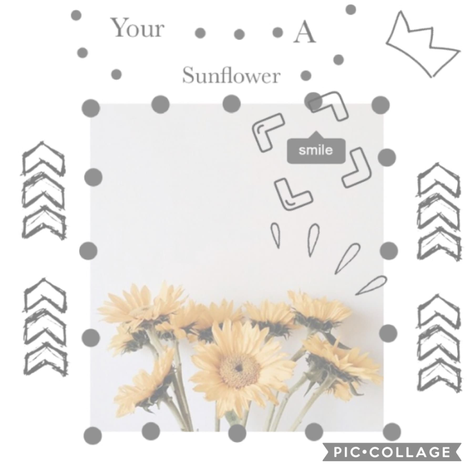 Just a simple sunflower collage 🌻