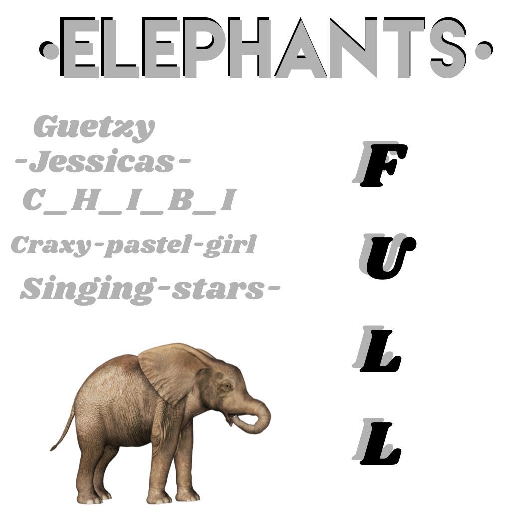 Elephants- full