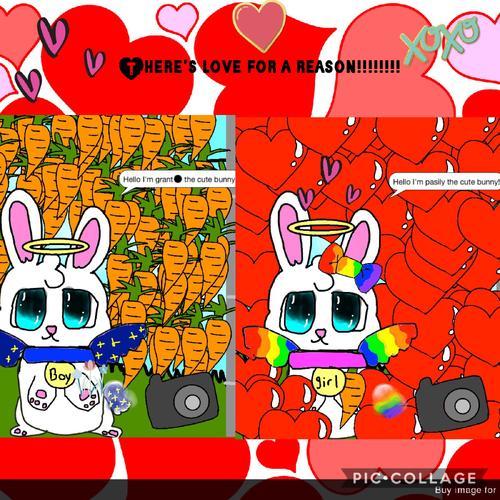 Assets?key=724a775f1979d5bfc896b1070165dd54&collage id=172385028&size=500x500