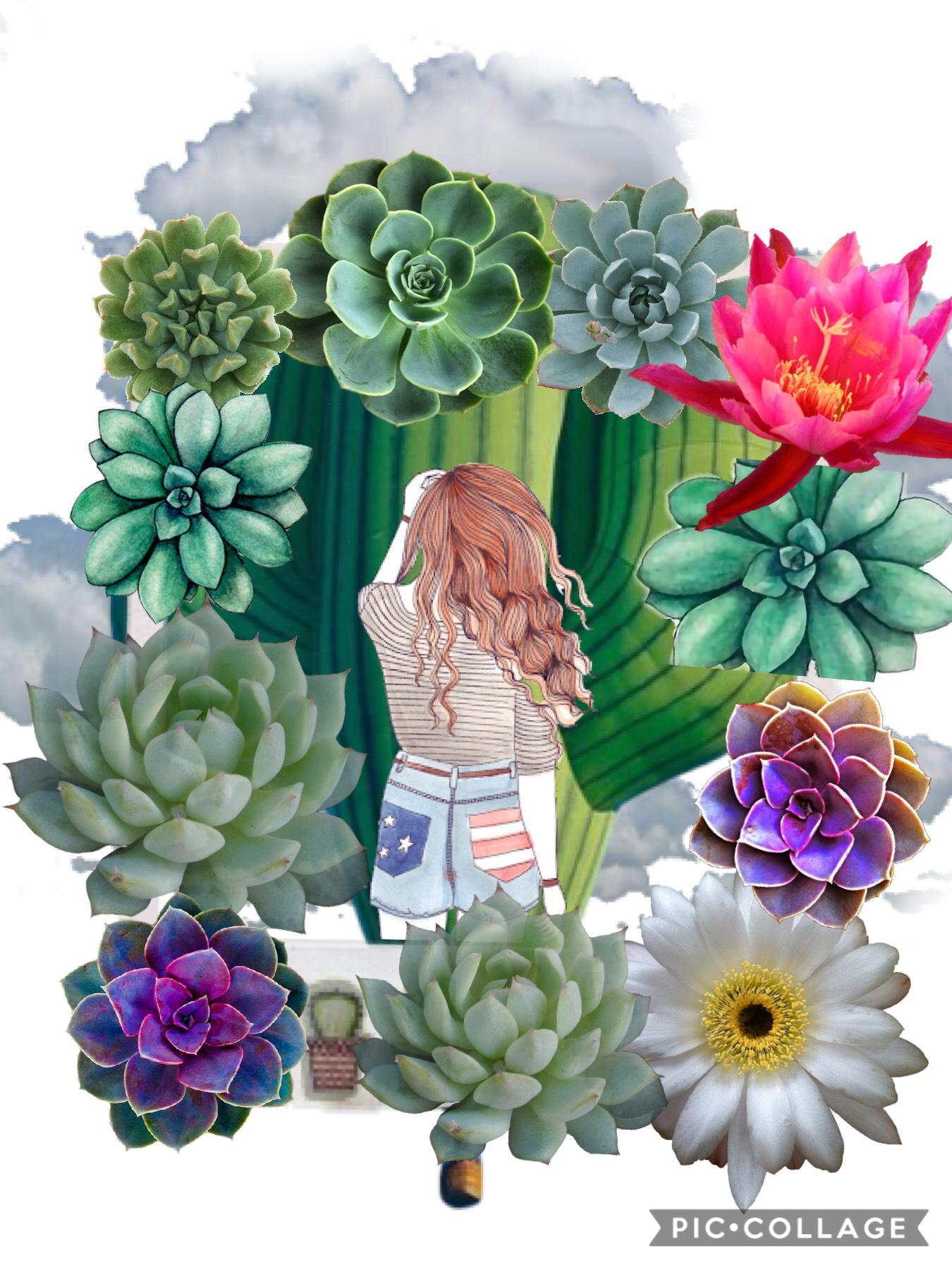 Tap   Cactus flower girl ❤️❤️❤️❤️ love the open world 🌎