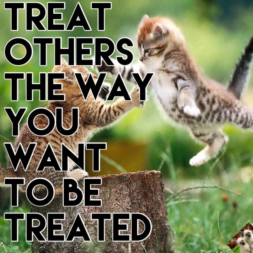 Treat others the way you want to be treated! Like if you agree!