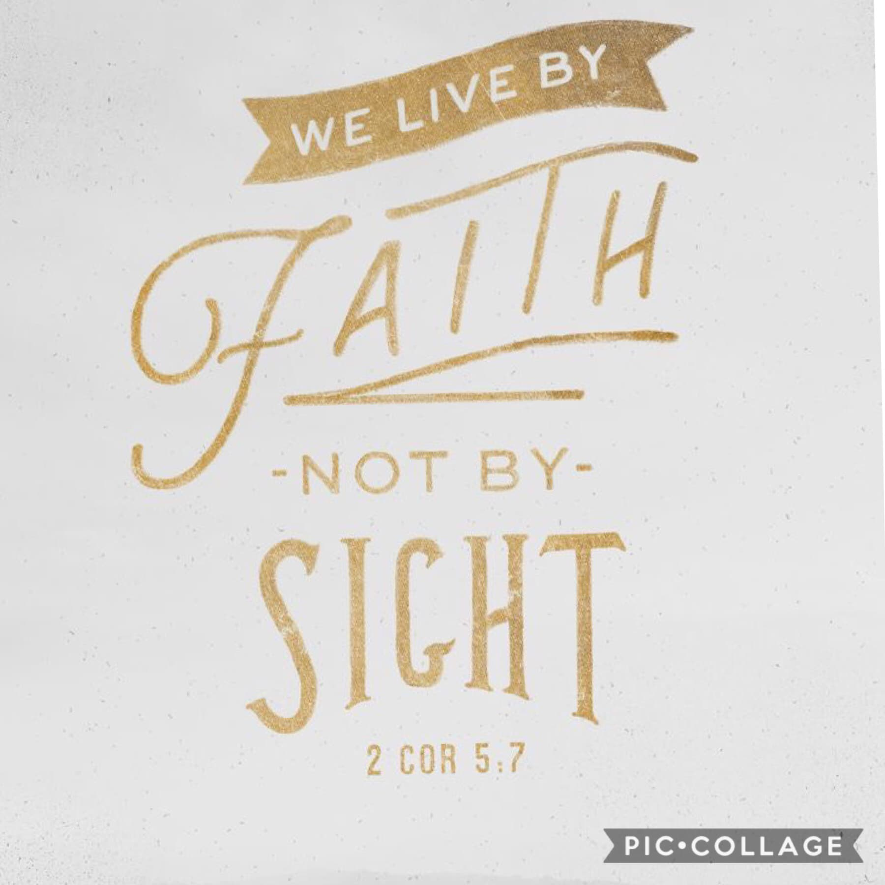 ✝️Bible Verse of the Day✝️