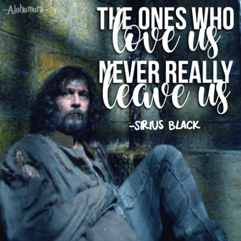 i've got so many things to say about this edit (1) this reminds me of Mal #NeverForgetMal (2) SIRIUS BLACK IS SO INSPIRATIONAL (3) HAPPY BIRTHDAY NEVILLE LONGBOTTOM!!