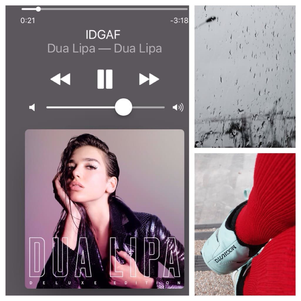 this week in pictures - of course i had to include my music queen dua lipa ❤️