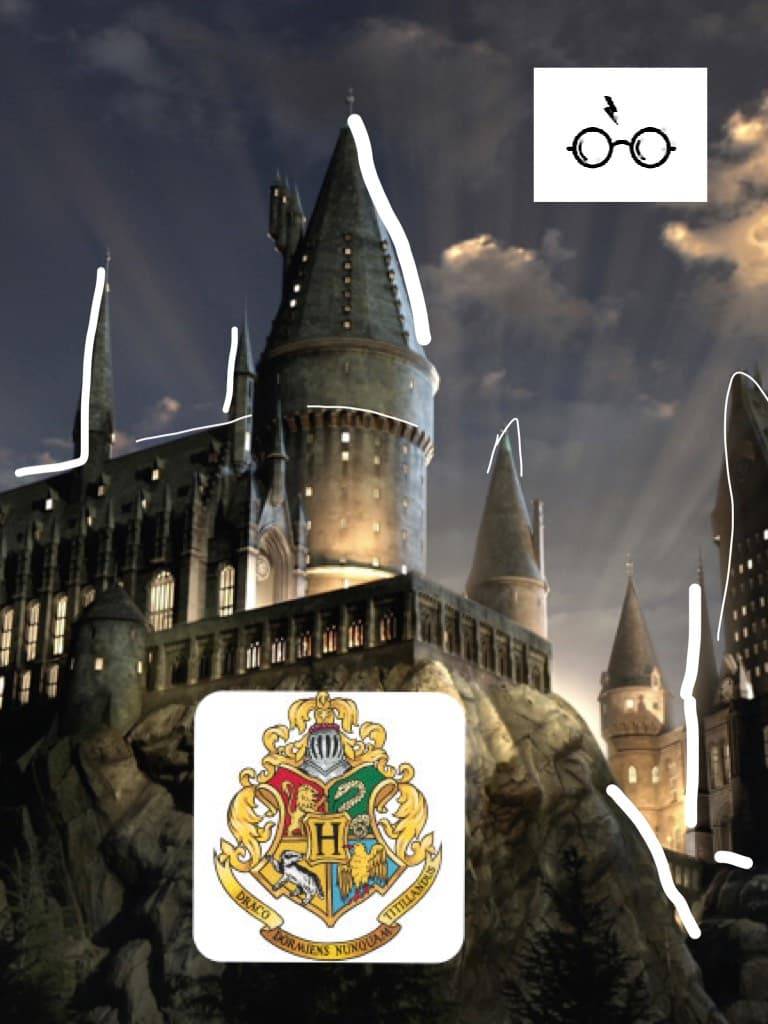 Harry Potter for life