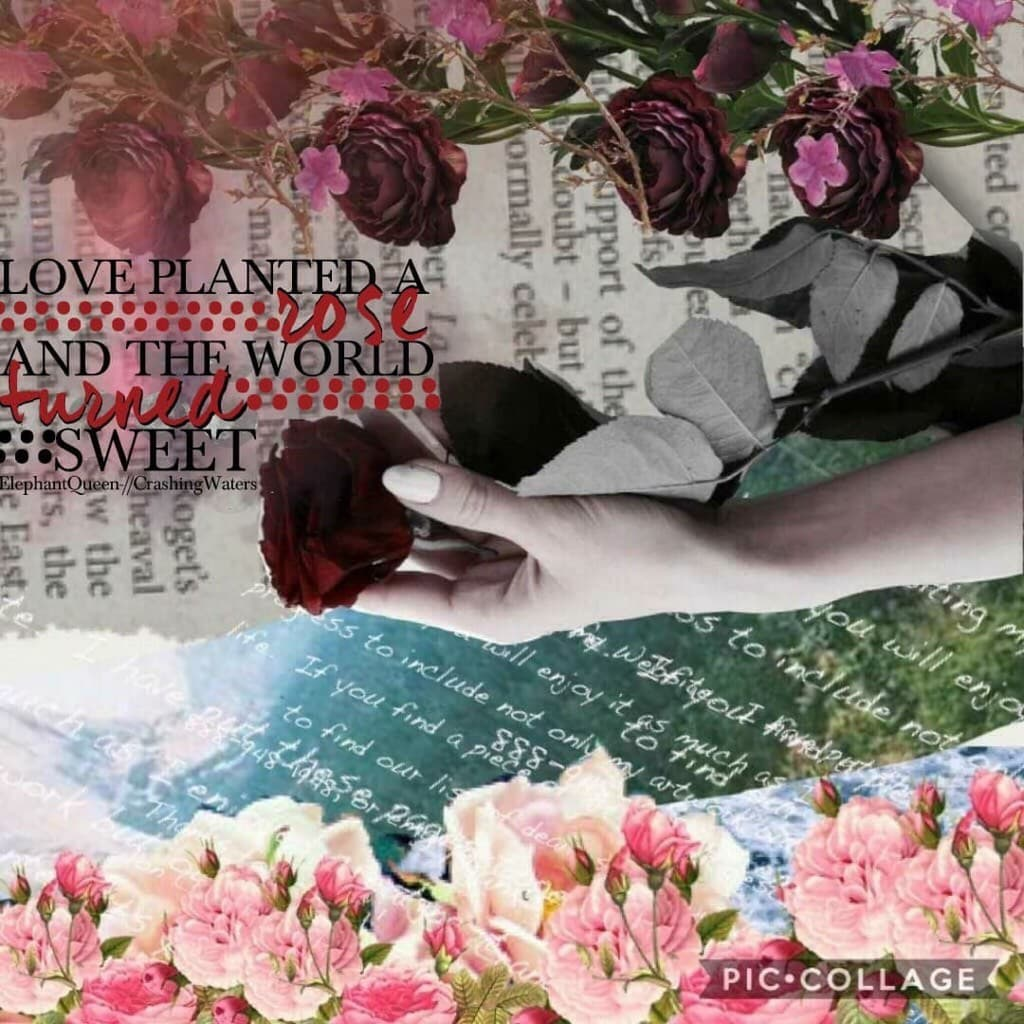 Collab with my best friend -elephant queen-💗😘🌊ilysm!!! I did background she did GORGEOUS quote!!🙈❤️thanks for all joining in the kindness collage swap! Keep spreading word! 🤗trying out new styles so keep an eye out!😂🎉💜