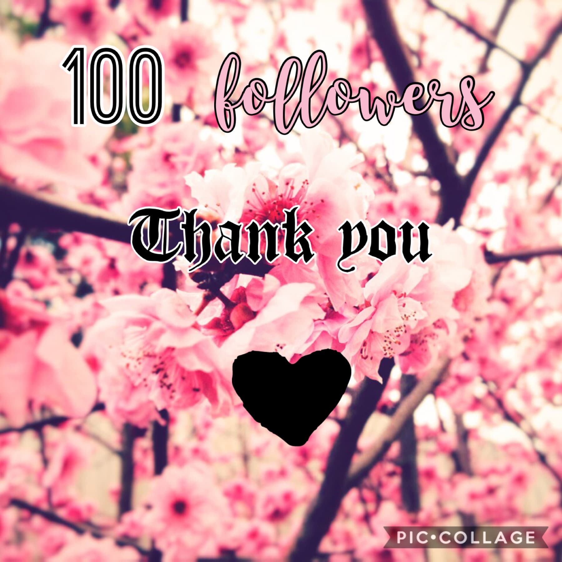 Thank you for the follows, likes and comments 💕♥️