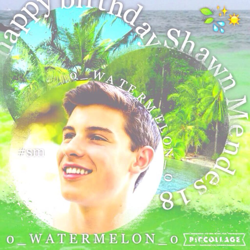 Happy bday Shawn! I'm so proud of your success! I had a countdown for this day for a whole month I'm a huge fan! #mendesarmy🍃💧