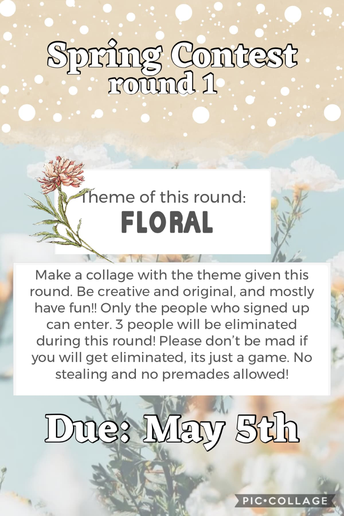 Round 1 is here!! Good luck everyone!! 🌸✨