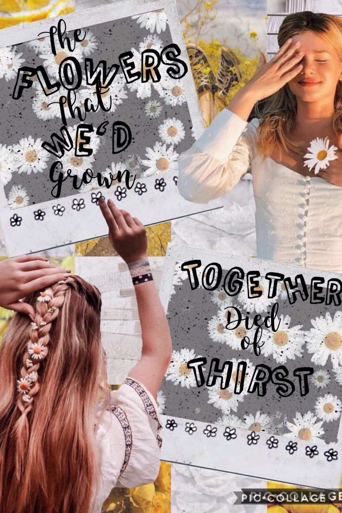 Collab with the awesome...........  -clear-blue-waters!💛  QOTD:Fav line from Taylor Swift Song? AOTD:it turns out freedom makes nothing but missing u wishing I realised what I had when u were mine (back to December) so sad but beautiful xx💛