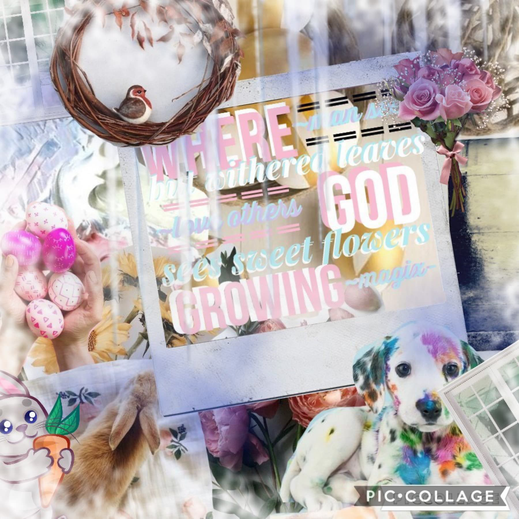 Woo hii this is so bad but whatever um very late Easter post happy Easter and Earth day and ANZAC day luv u guys 25.04 I am crazy woo I'm with my friend -NEON_L1FE- and we're having a blast woo 😂🙈👍📖🎥👙💕📲💩💩🥰🍟🤤🍔❤️😅🐵🐵😆🤞🥳😉😉📱😢👻🙊🙉🎶⌚️🔌👋🥳🤦♀️