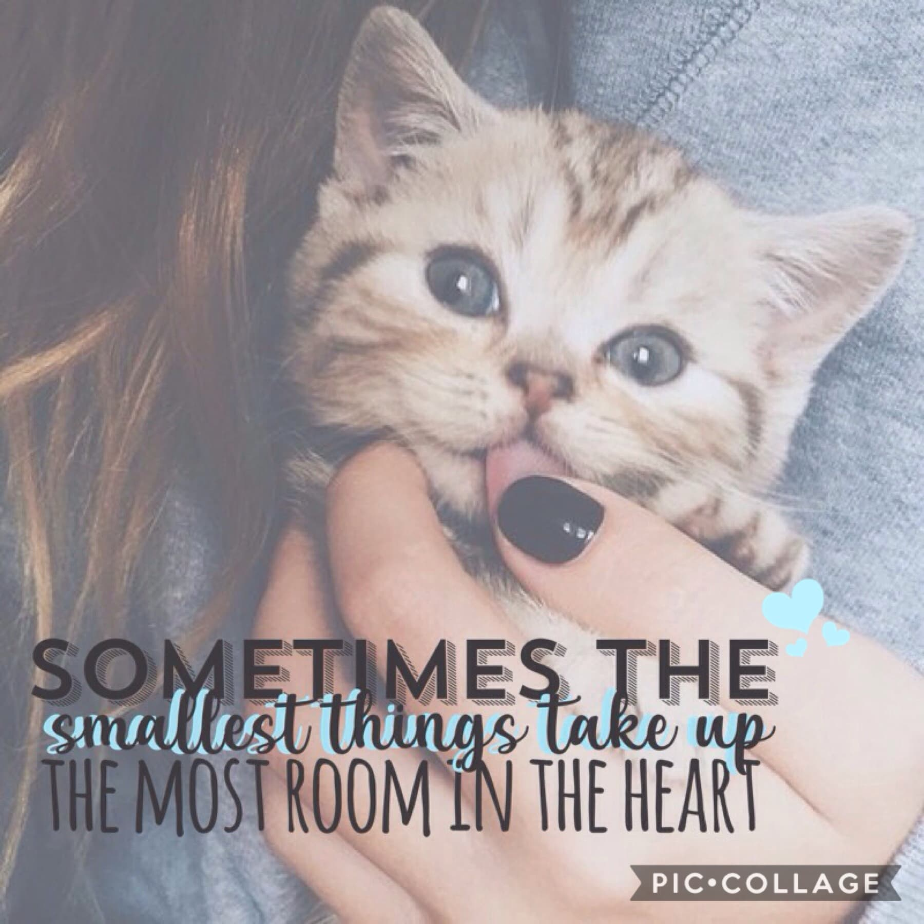 > tap < i love this quotes so much and it's so true as well just liking someone's post or leaving a comment it can really make their day to see support from other people ly xxx