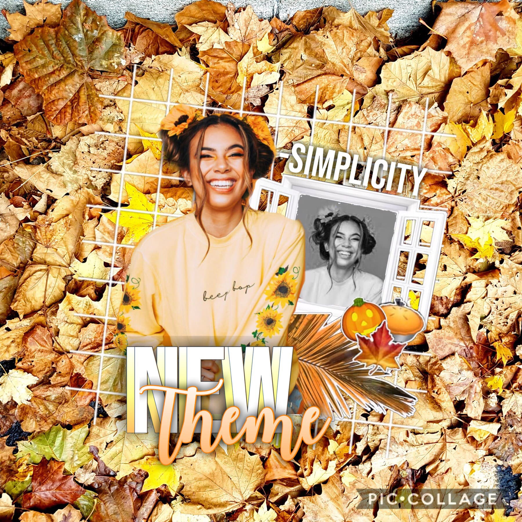 new theme!!🍁🍂  i havent made an edit yet so....😬