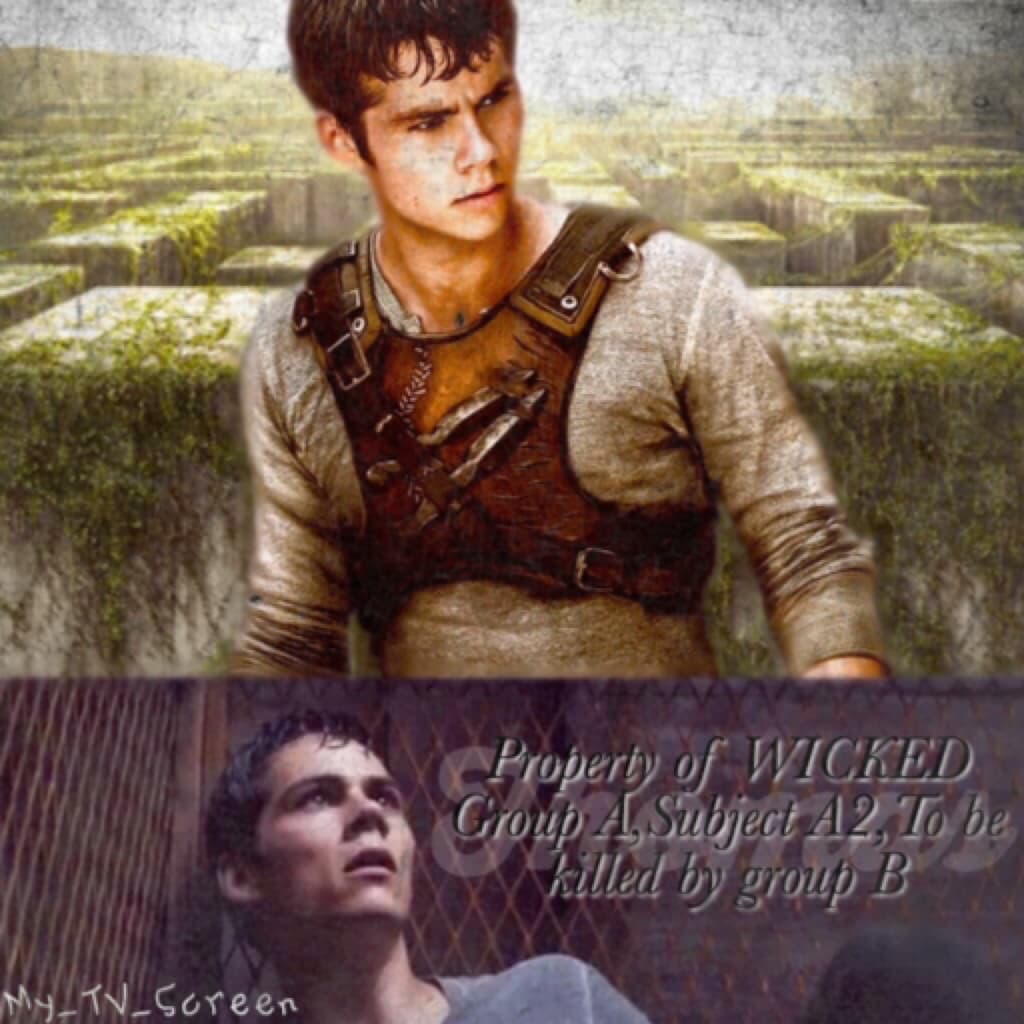 The Maze Runner #6 Click Here I am in so much pain right now, I just had a netball junior training then a trial for a senior team, I went over on my ankle and strained my knee, but carried on playing cause yolo, but i am so gonna ache in the morning😂😂