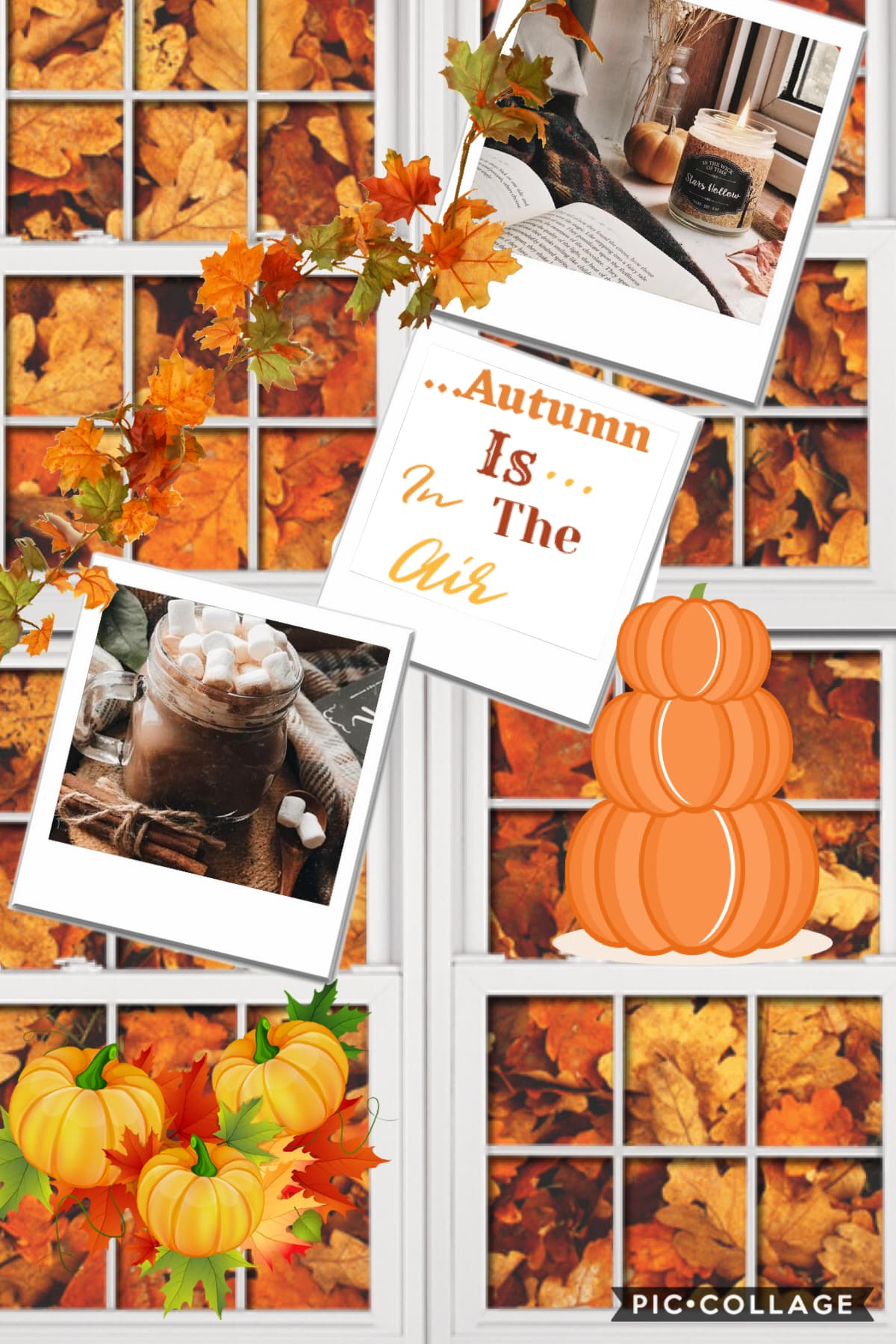Autumn collage as I followed aesthetic_stars amazing tutorial for this collage.