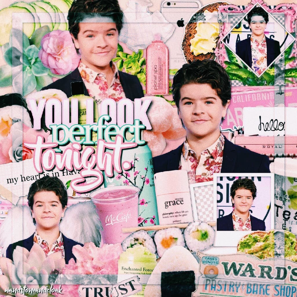 🌸click!:🌸 aweeee i love gaten with all my heart!! hes such a good actor and i really want to see more of him! dustin is by far one of the best characters too! q//ST character thats most like you? a//dustin! 💓