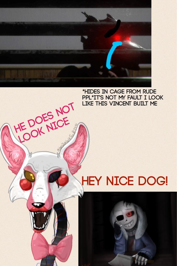Hey nice dog!