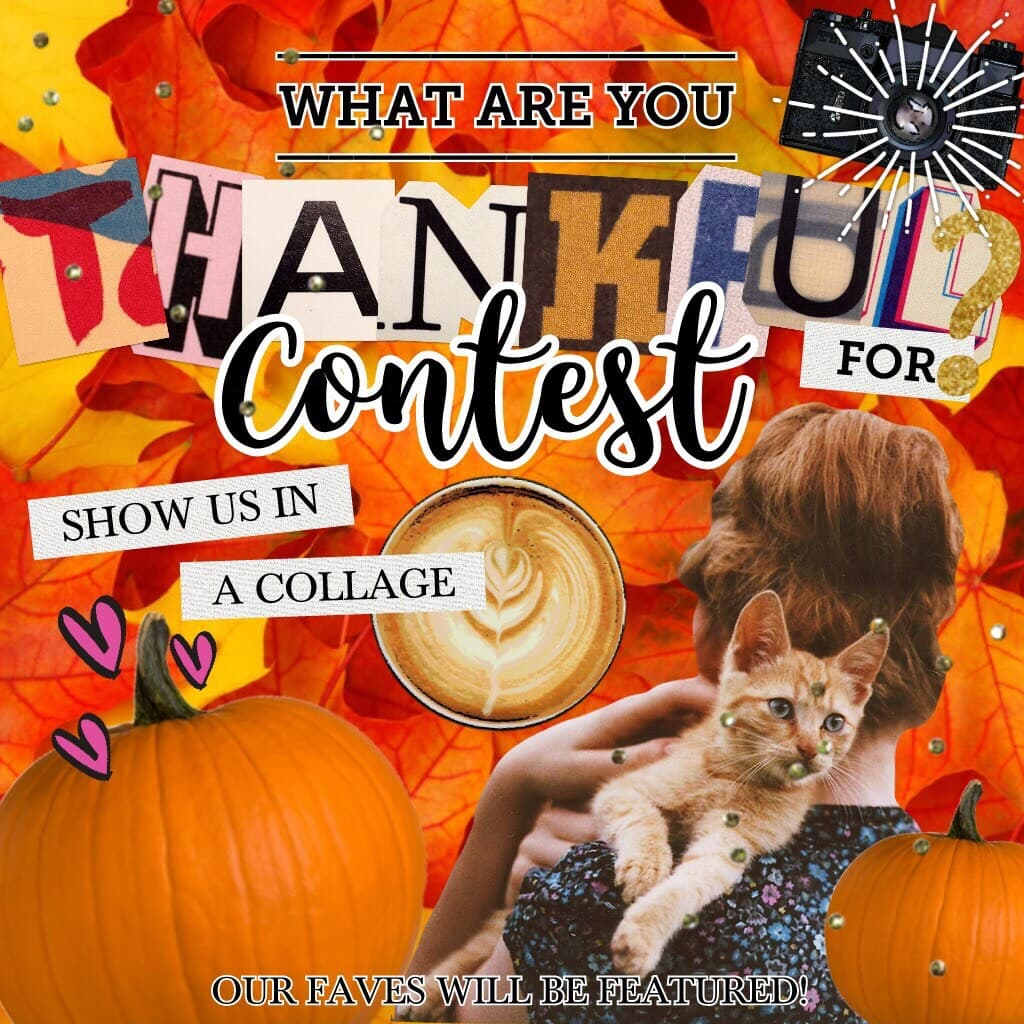 Thanksgiving contest!