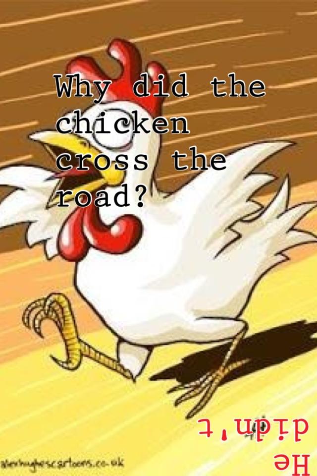 Смешные курицы рисунок