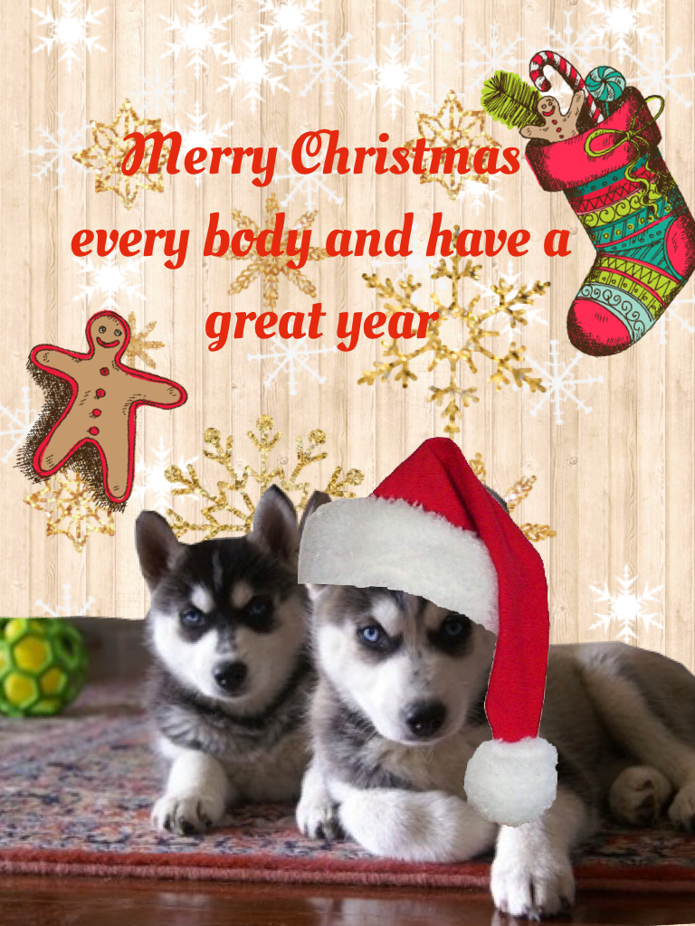 Merry Christmas every body