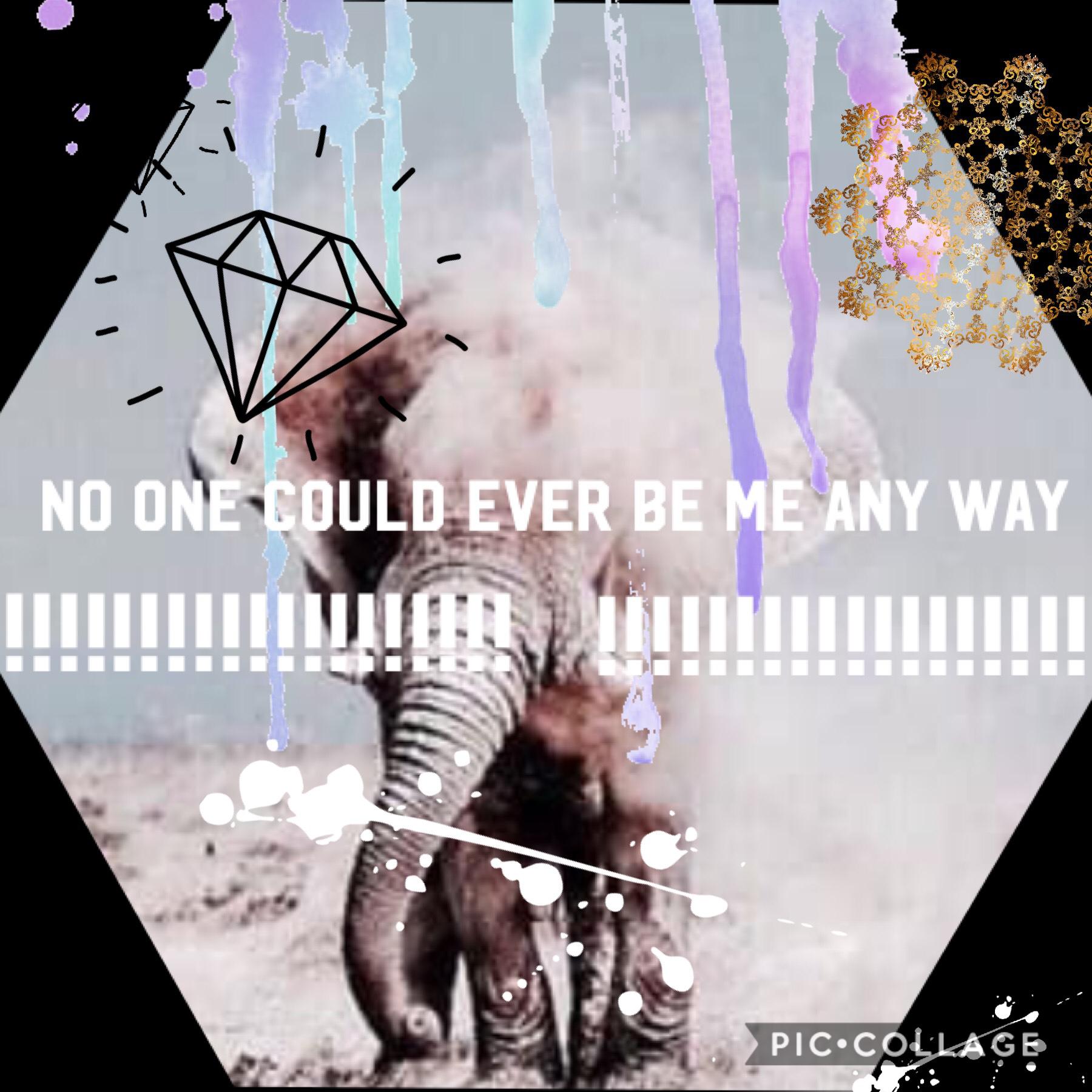 Collage by Conversegirl1885