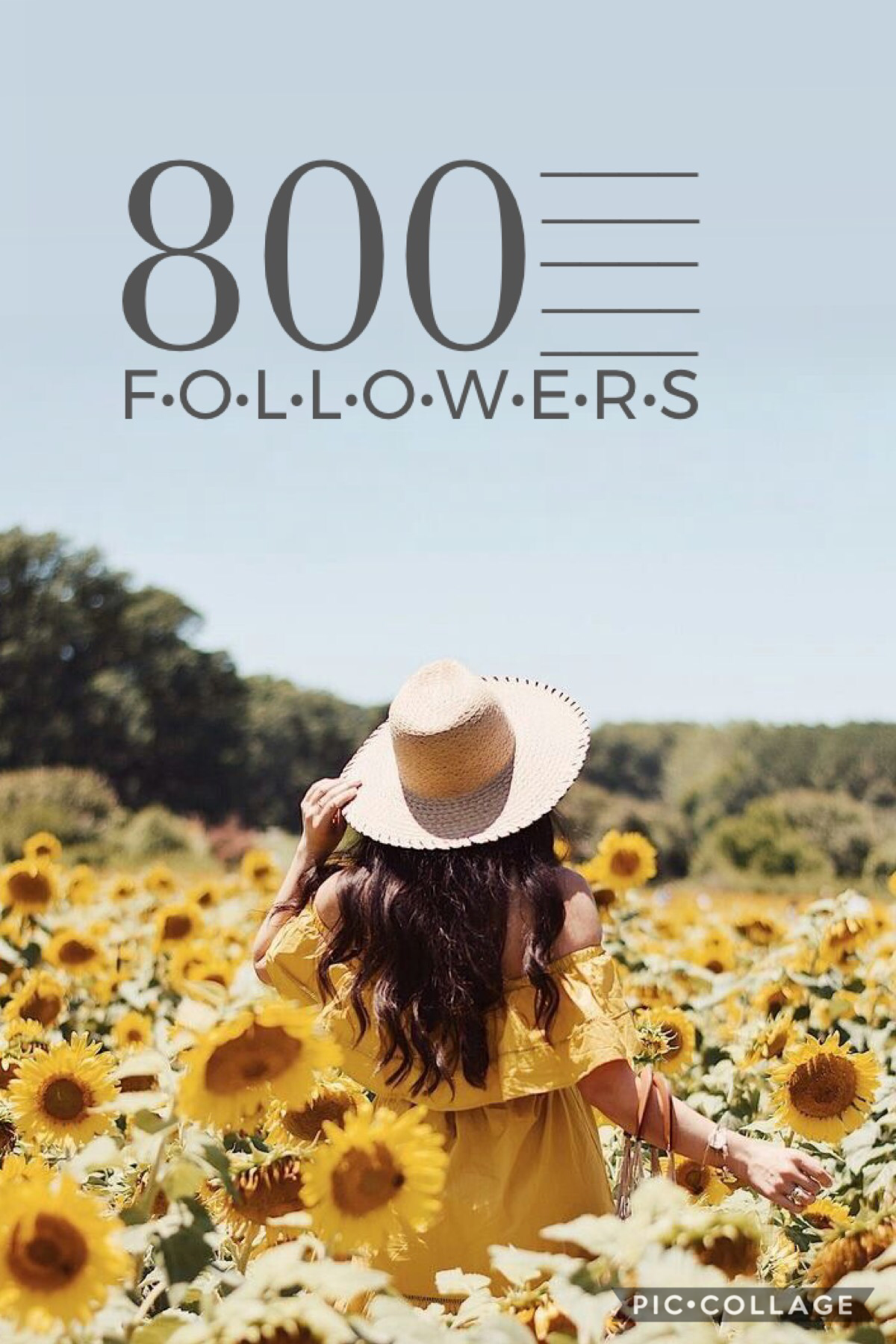 wowowow what?!? 800 followers?!?!?!? tysm!!!! i couldn't have made it this far without all of your love and support ❤️ 💕 ilyasm 💕