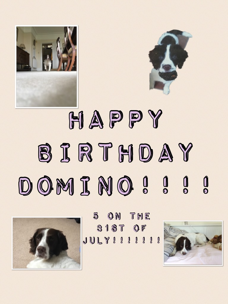 Happy birthday domino!!!! Love you bubba!!!!! Xxx