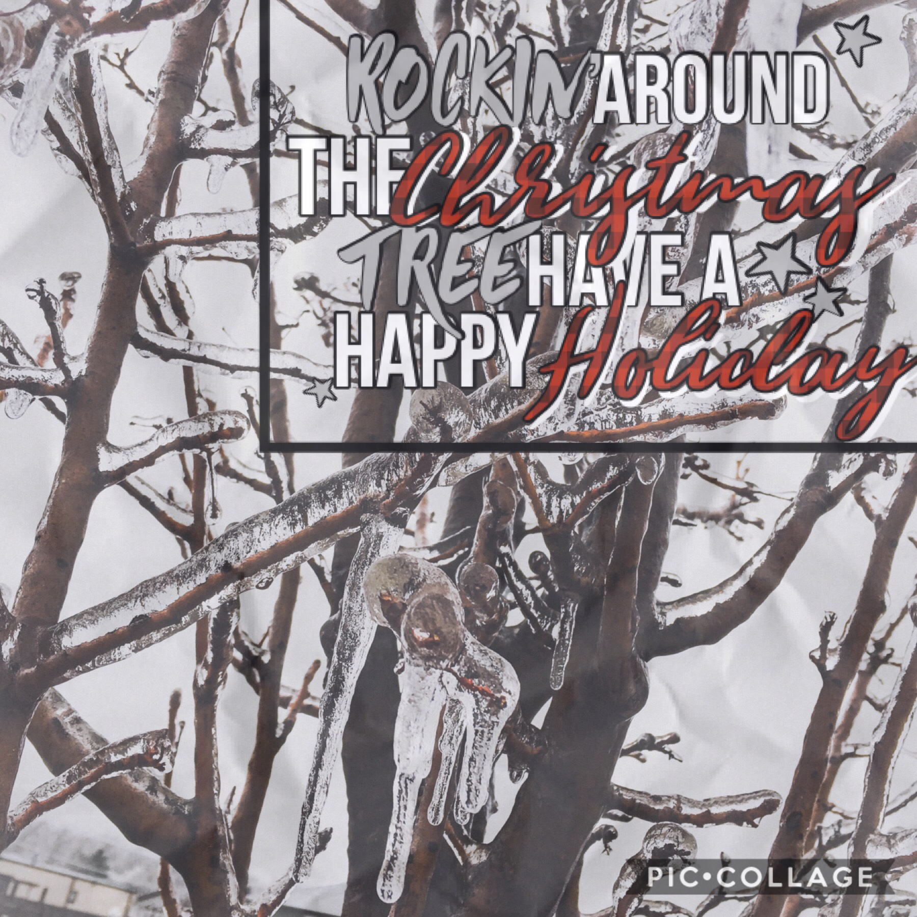 I took this picture in an ice storm last winter.