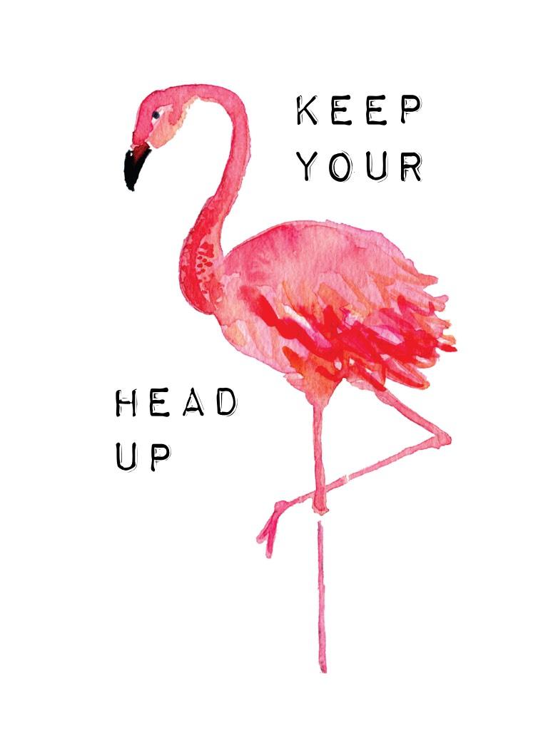 Keep your head up high!!