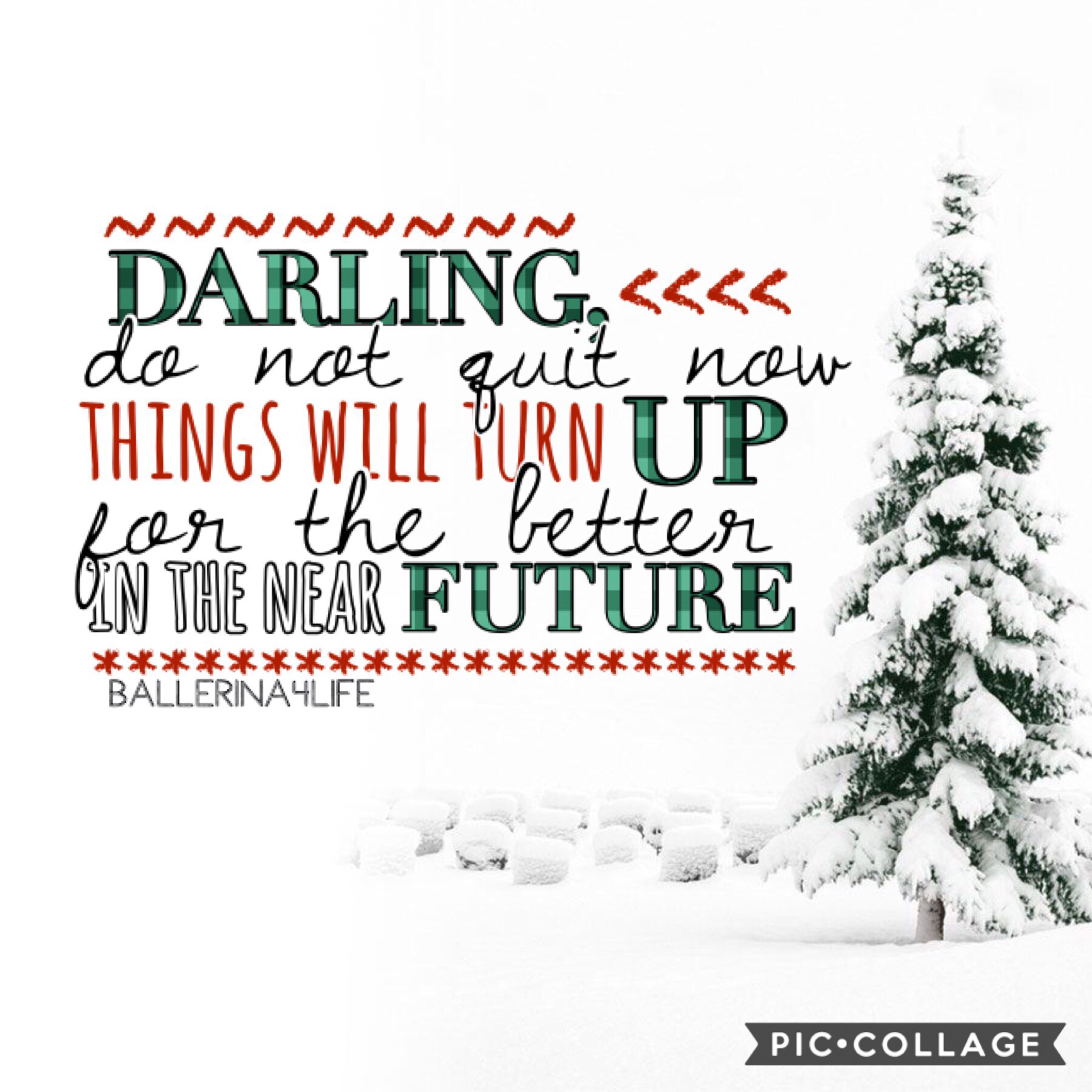 {12/1/18} Day 1 of countdown to Christmas! Sorry for being inactive lately, Ik that can be a bit annoying but I'm here now and that's all that matters! :)💕 only 31 days till 2019!😱 QOTD: do u have a real or artificial Christmas tree?🌲