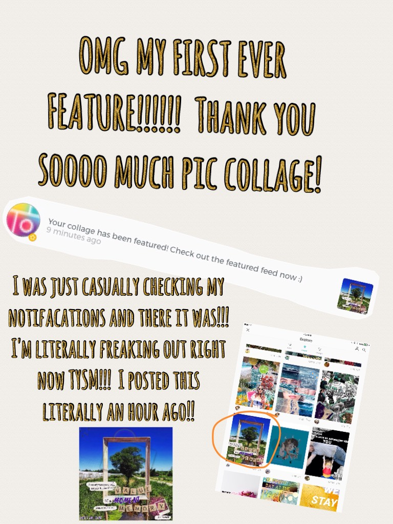 Thank you all so, so much!  Make sure to check out the feature feed!