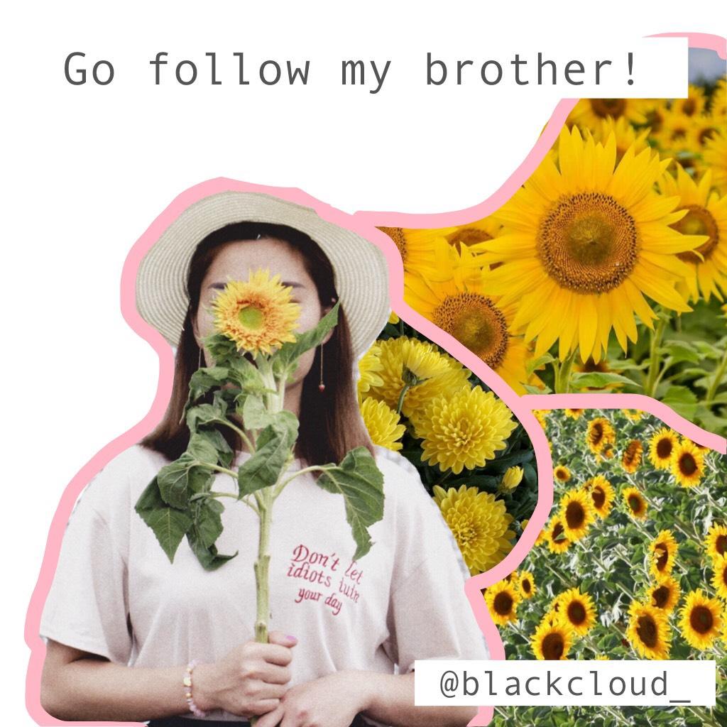 Go follow my brother!