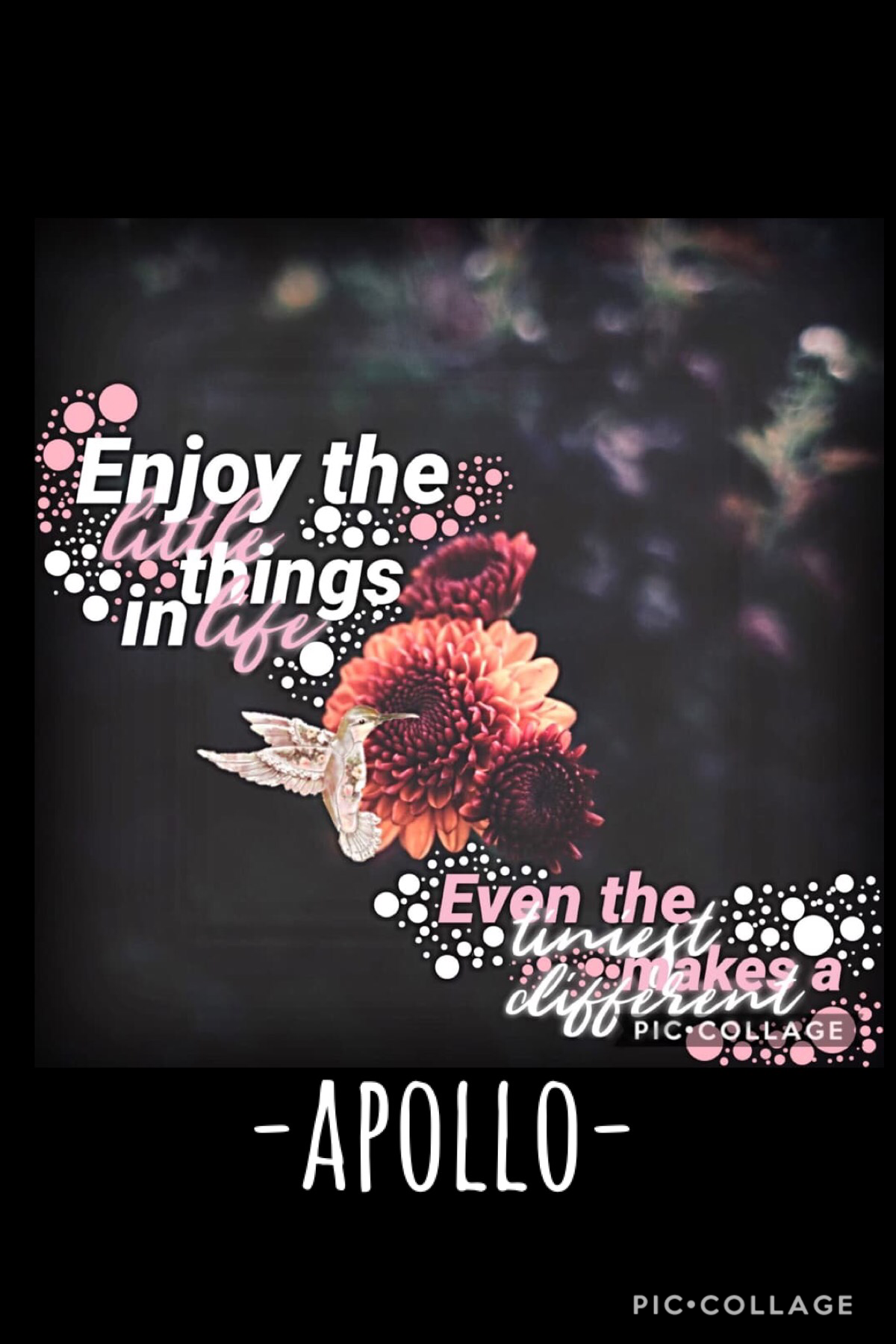 🌸TAP🌺 Please follow-Apollo- , they have great collages and just they are amazing ❤️. Also , sorry I have been gone😬