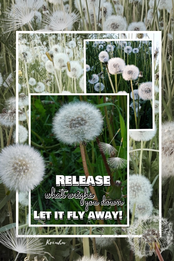 Lovely summer weekend over, been enjoying it soo much!! Love to blow on dandelion seeds and se how they fly, they are such pretty parachutes!! 💟🌞😊
