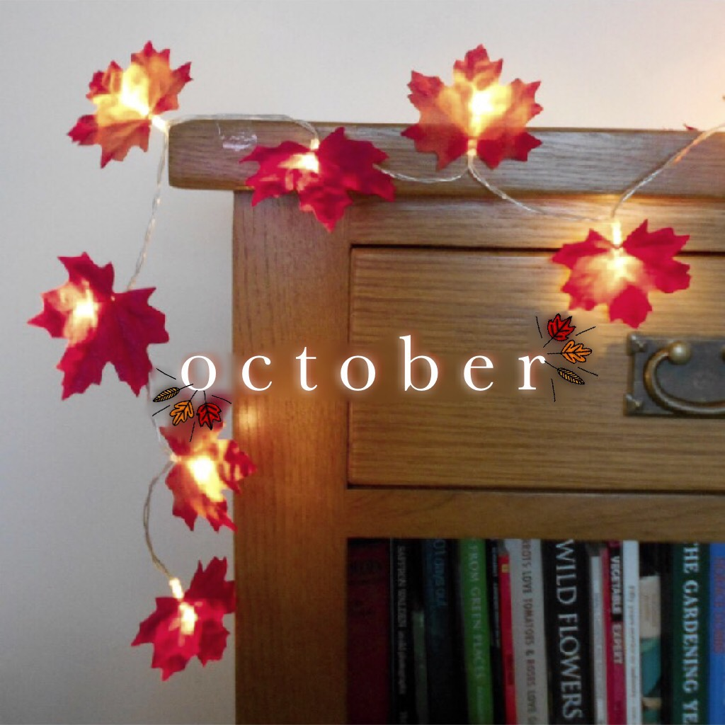 youblitheringidiot is typing...  We've reached my favourite point in the year... October, November and December! Today's mag will feature my favourite things to do and special occasions that are coming up!🔥🍂🎃🎆🎄